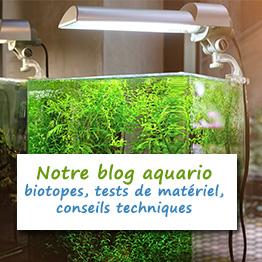 matériel aquascaping pour votre aquarium
